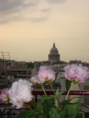 Pantheon Flowers