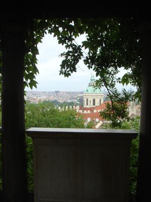 Viney View