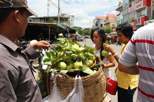 Guava Gamble