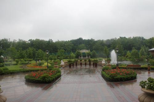 Rainy Gardens